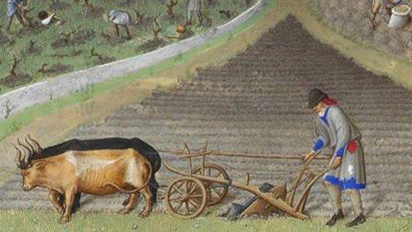 Tractores para Algernón