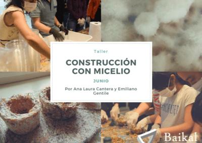 CONSTRUCCIÓNCONMICELIO (1)