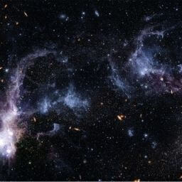 Membresía Universo